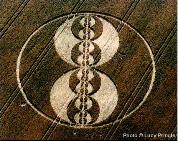 crop-circle-lucy